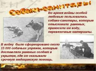Во время войны особой любовью пользовались собаки-санитары, которые отыскивал