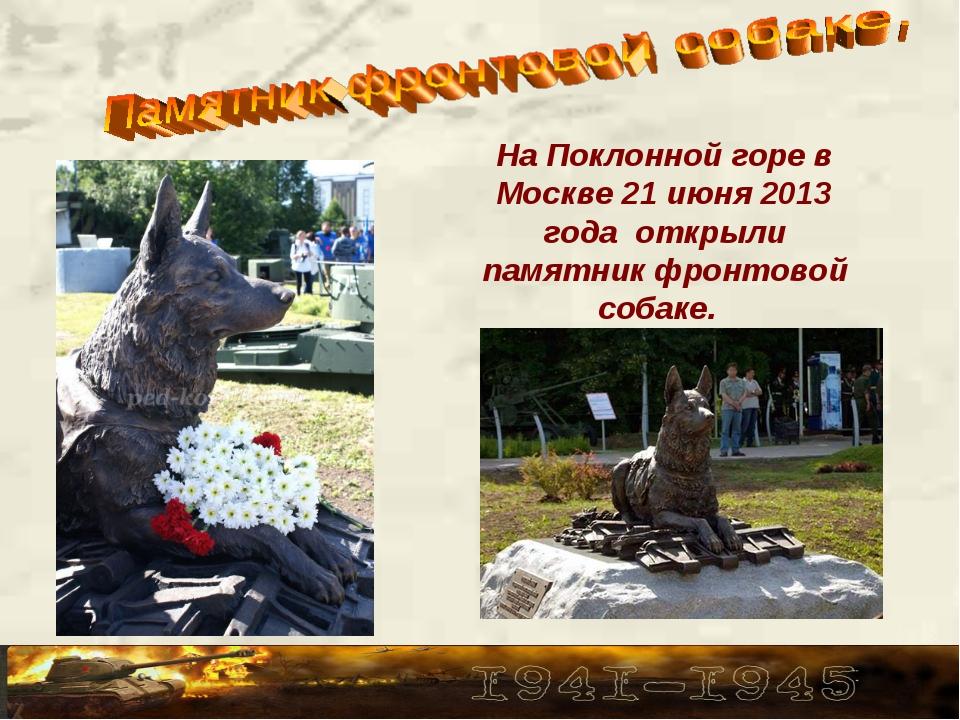 На Поклонной горе в Москве 21 июня 2013 года открыли памятник фронтовой собак...