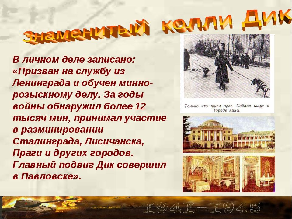 В личном деле записано: «Призван на службу из Ленинграда и обучен минно-розыс...