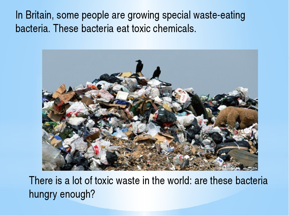 In Britain, some people are growing special waste-eating bacteria. These bact...