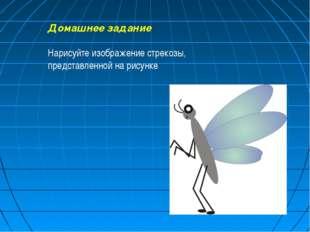 Домашнее задание Нарисуйте изображение стрекозы, представленной на рисунке.