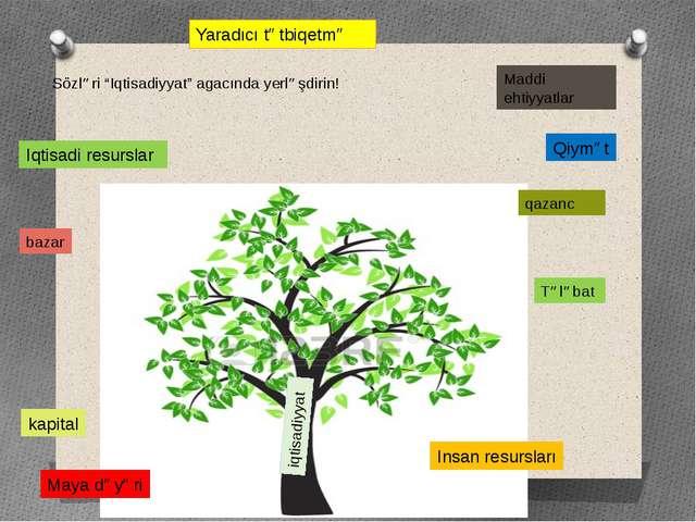 """Yaradıcı tətbiqetmə iqtisadiyyat Sözləri """"Iqtisadiyyat"""" agacında yerləşdirin!..."""