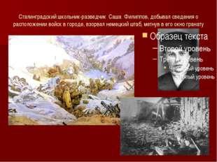 Сталинградский школьник-разведчик Саша Филиппов, добывал сведения о расположе
