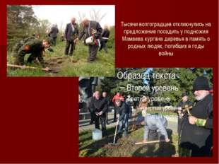 Тысячи волгоградцев откликнулись на предложение посадить у подножия Мамаева к