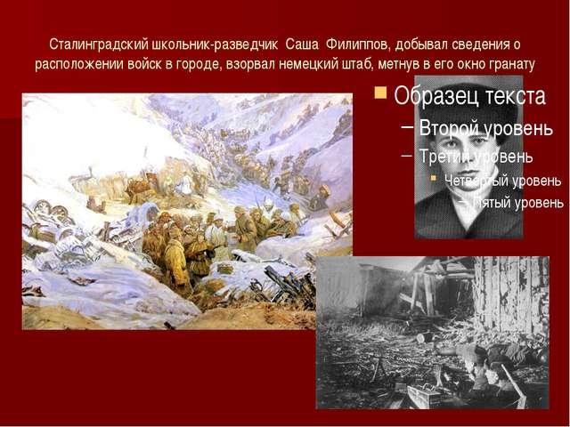 Сталинградский школьник-разведчик Саша Филиппов, добывал сведения о расположе...