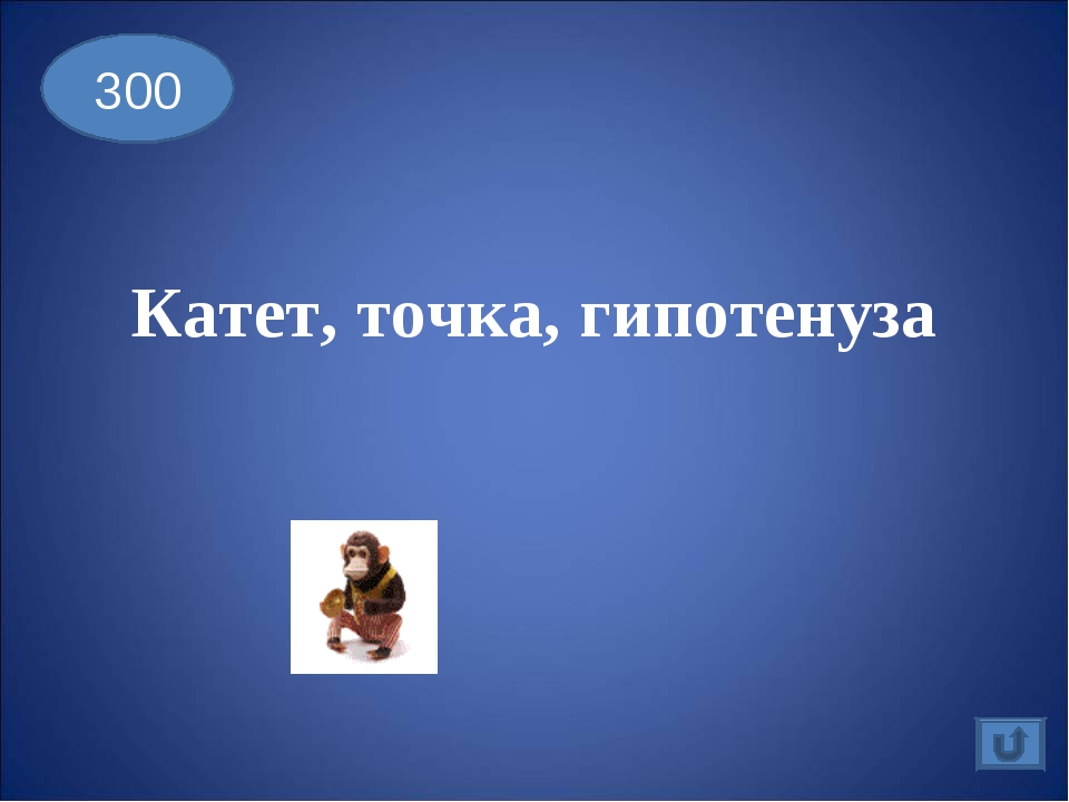 Катет, точка, гипотенуза 300