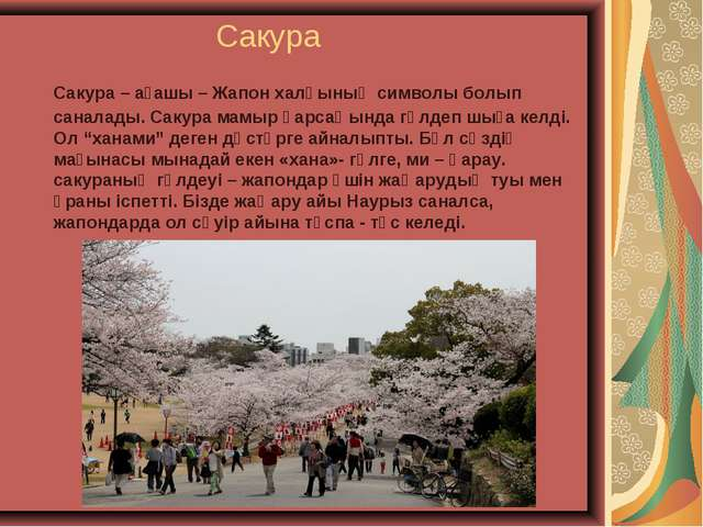 Сакура Сакура – ағашы – Жапон халқының символы болып саналады. Сакура мамыр...