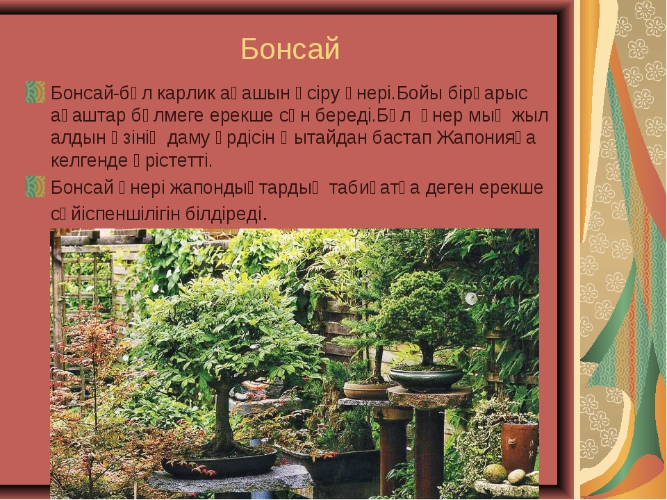 Бонсай Бонсай-бұл карлик ағашын өсіру өнері.Бойы бірқарыс ағаштар бөлмеге ер...