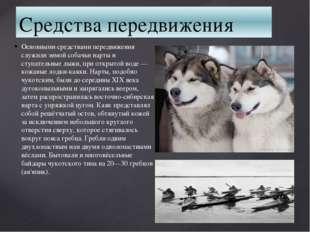 Средства передвижения Основными средствами передвижения служили зимой собачьи