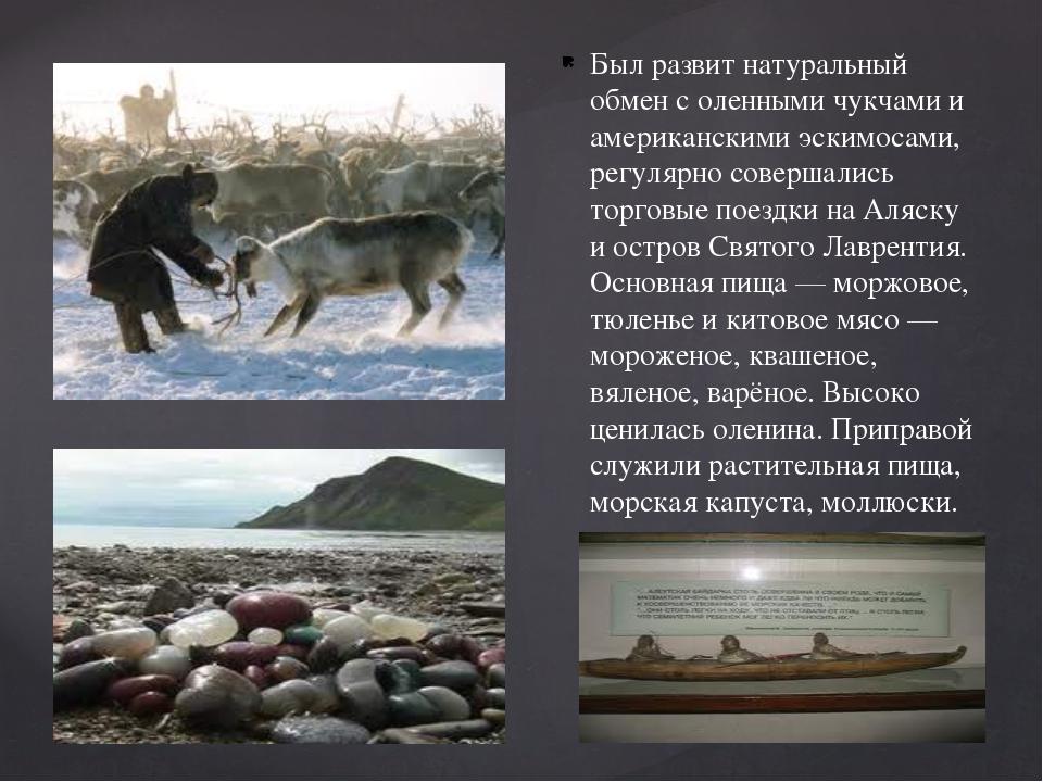 Был развит натуральный обмен с оленными чукчами и американскими эскимосами, р...