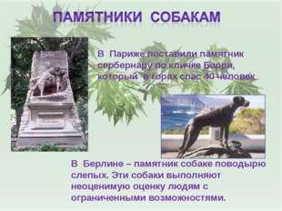 В Париже поставили памятник сербернару по кличке Барри, который в горах спас