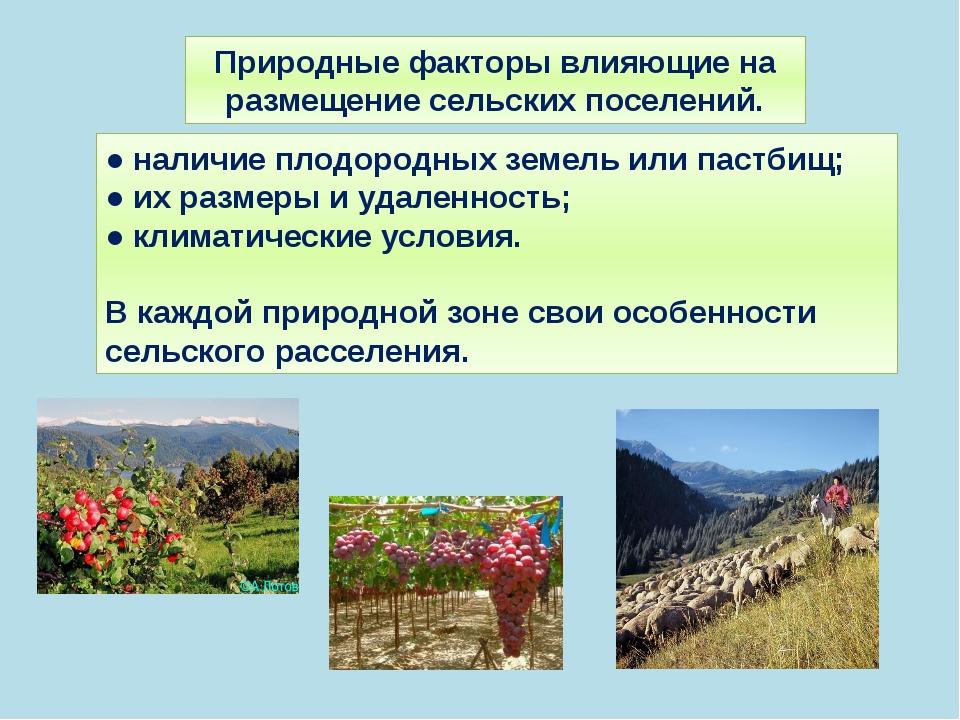 Природные факторы влияющие на размещение сельских поселений. ● наличие плодор...