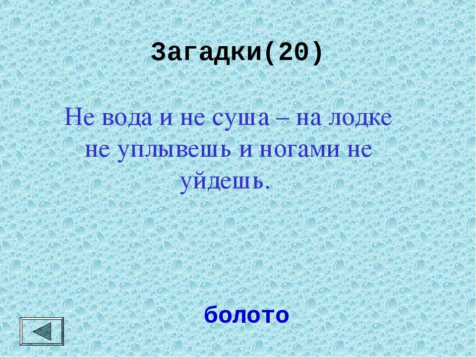 Загадки(20)  болото Не вода и не суша – на лодке не уплывешь и ногами не уйд...