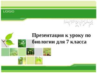 Презентация к уроку по биологии для 7 класса L/O/G/O www.themegallery.com