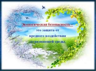 Экологическая безопасность – это защита от вредного воздействия загрязняющей