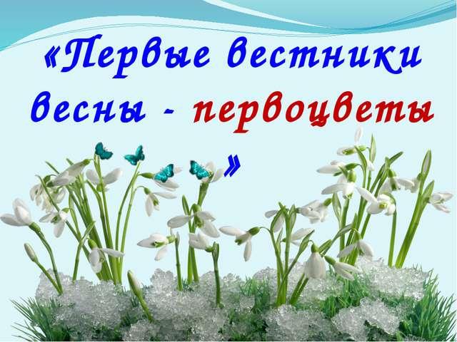 «Первые вестники весны - первоцветы »