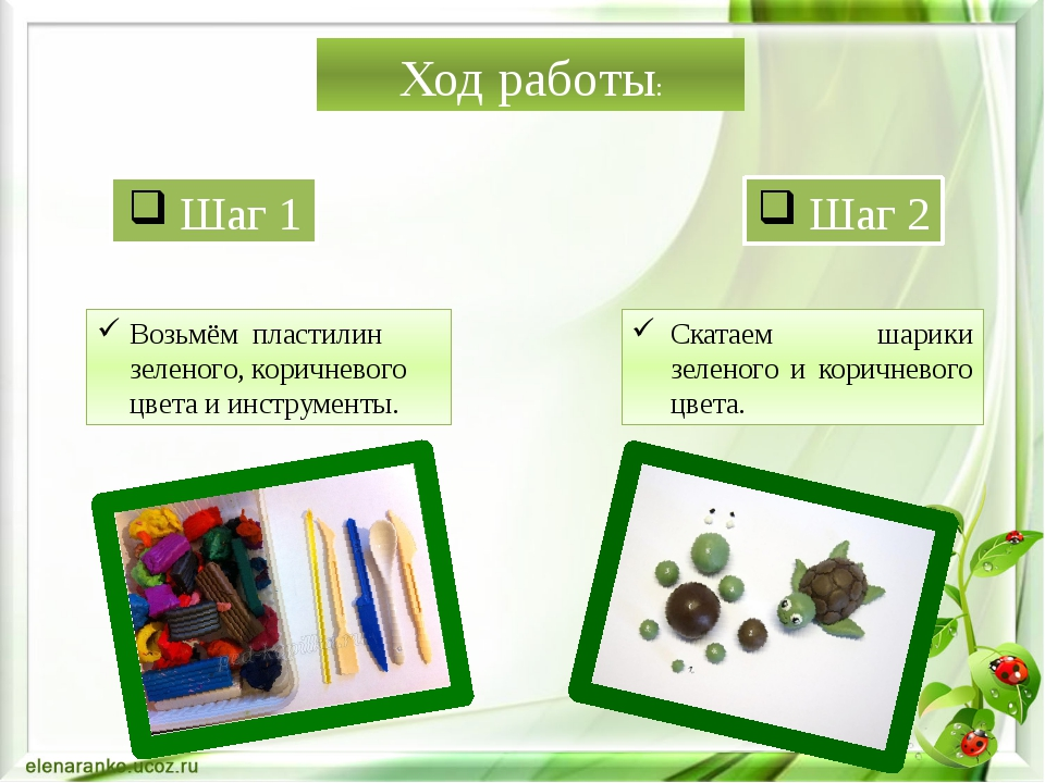 Ход работы: Шаг 1 Шаг 2 Возьмём пластилин зеленого, коричневого цвета и инстр...