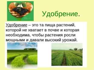Удобрение. Удобрение – это та пища растений, которой не хватает в почве и ко