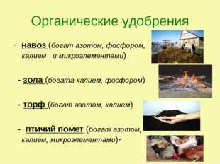 Органические удобрения навоз (богат азотом, фосфором, калием и микроэлементам