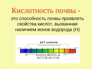 Кислотность почвы - это способность почвы проявлять свойства кислот, вызванна