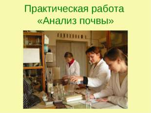 Практическая работа «Анализ почвы»