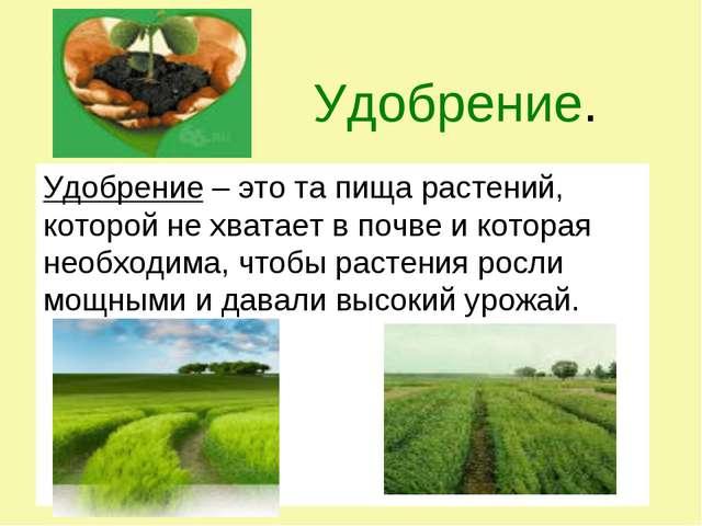 Удобрение. Удобрение – это та пища растений, которой не хватает в почве и ко...