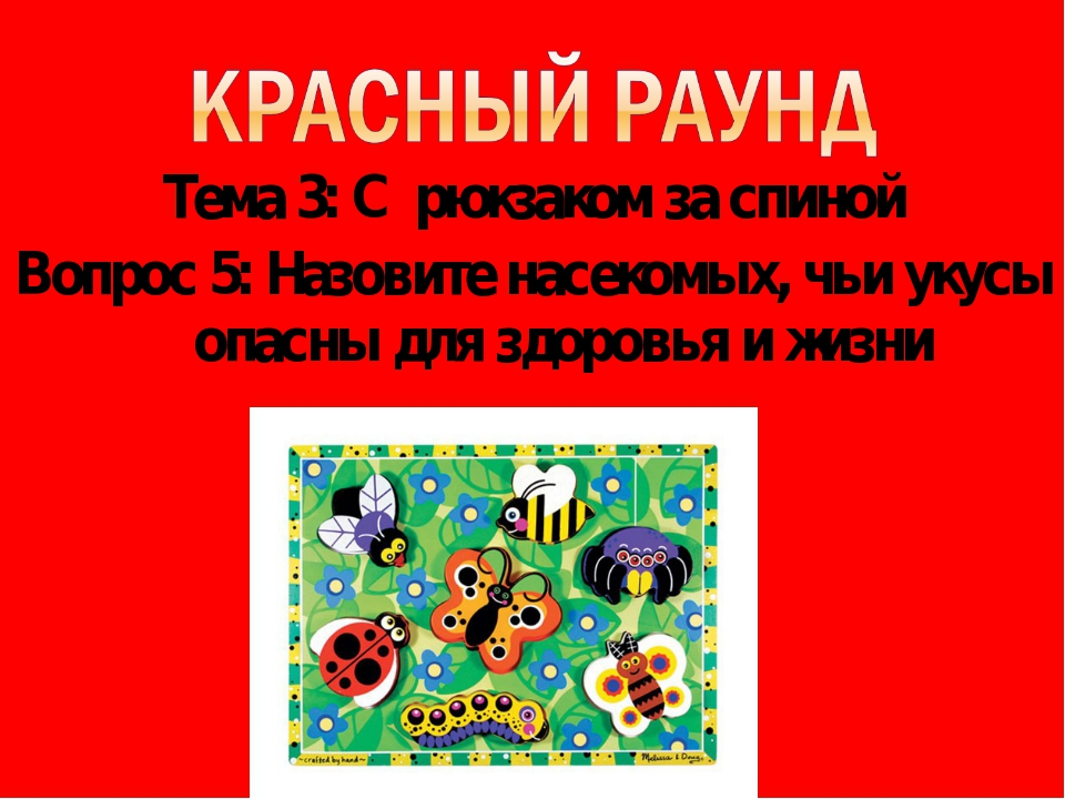 Тема 3: С рюкзаком за спиной Вопрос 5: Назовите насекомых, чьи укусы опасны д...