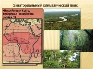 Экваториальный климатический пояс Бассейн реки Конго, побережье Гвинейского з