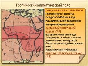 Тропический климатический пояс Воздушная масса: тропическая Господствуют пасс