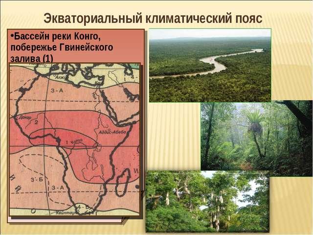 Экваториальный климатический пояс Бассейн реки Конго, побережье Гвинейского з...