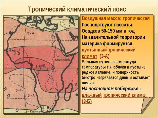 Тропический климатический пояс Воздушная масса: тропическая Господствуют пасс...