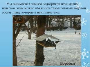 Мы занимаемся зимней подкормкой птиц давно, наверное этим можно объяснить та