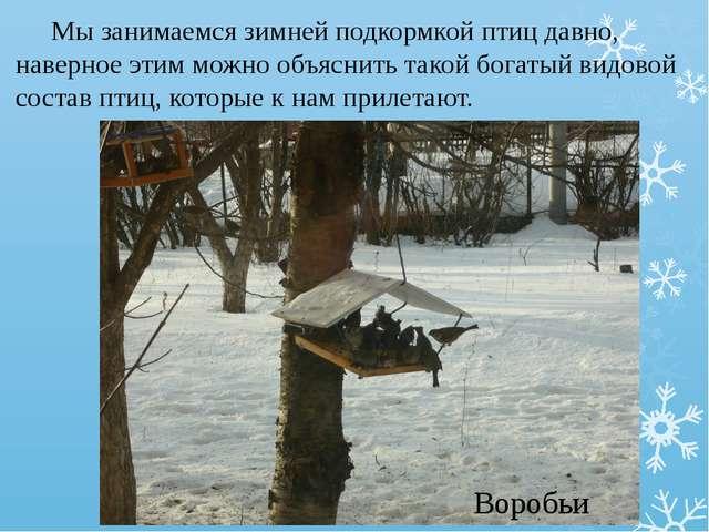 Мы занимаемся зимней подкормкой птиц давно, наверное этим можно объяснить та...