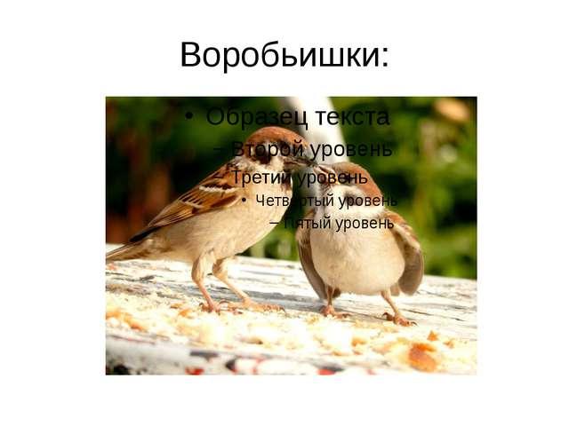 Воробьишки: