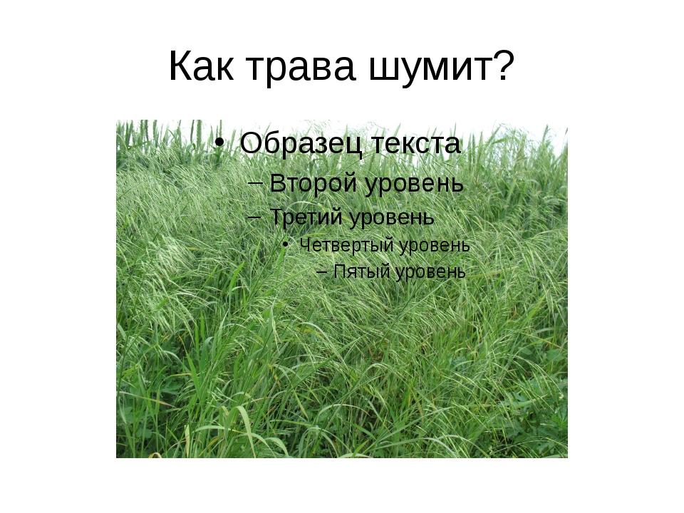 Как трава шумит?
