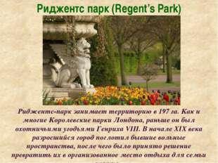 Риджентс парк (Regent's Park) Риджентс-парк занимает территорию в 197 га. Как