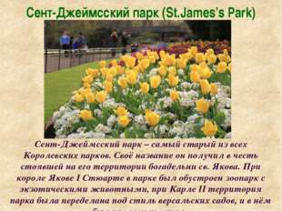 Сент-Джеймсский парк (St.James's Park) Сент-Джеймсский парк – самый старый из