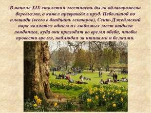 В начале XIX столетия местность была облагорожена деревьями, а канал превращё