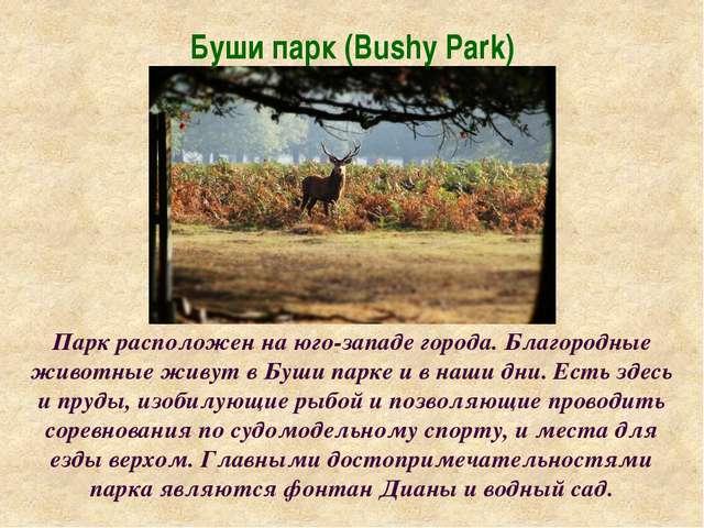 Буши парк (Bushy Park) Парк расположен на юго-западе города. Благородные живо...
