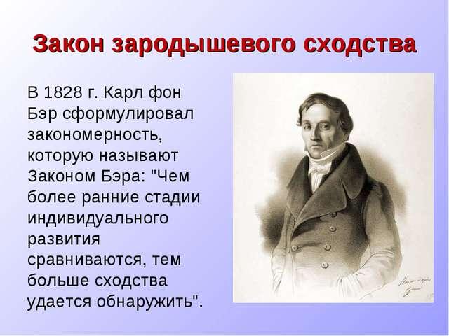Закон зародышевого сходства В 1828 г. Карл фон Бэр сформулировал закономернос...
