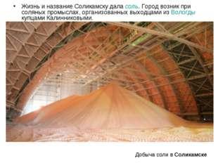 Жизнь и название Соликамску дала соль. Город возник при соляных промыслах, ор