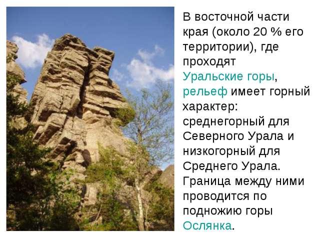В восточной части края (около 20% его территории), где проходят Уральские го...