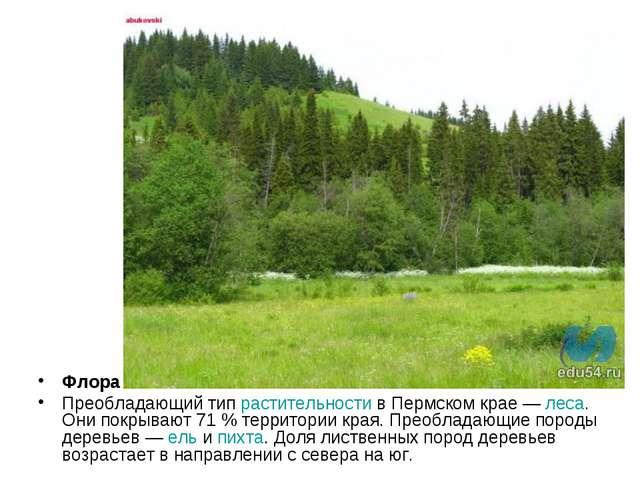 Флора Преобладающий тип растительности в Пермском крае— леса. Они покрывают...
