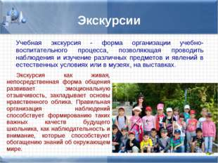 Экскурсии Учебная экскурсия - форма организации учебно-воспитательного процес