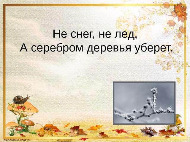 Не снег, не лед, А серебром деревья уберет.