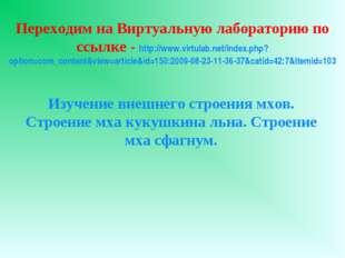 Переходим на Виртуальную лабораторию по ссылке - http://www.virtulab.net/inde