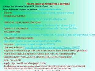 Видео (Маршанция, кукушкин лён, сфагнум) - http://school-collection.edu.ru/ И