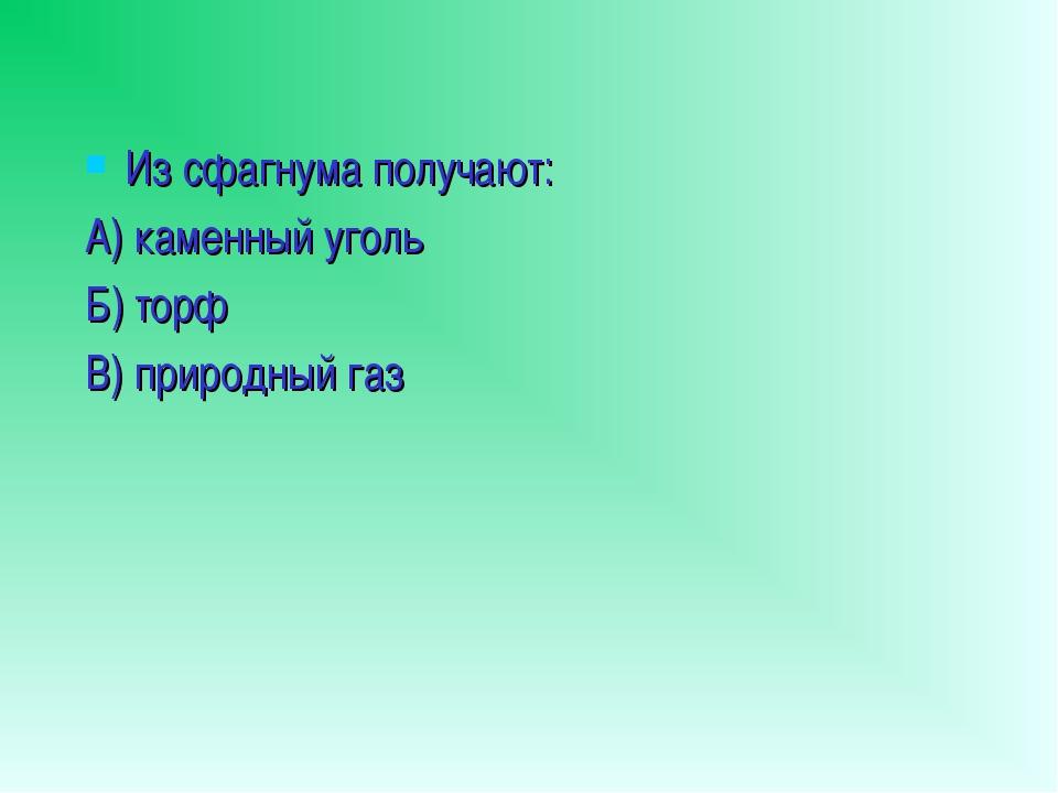 Из сфагнума получают: А) каменный уголь Б) торф В) природный газ