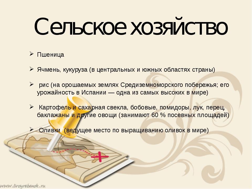 Сельское хозяйство Пшеница Ячмень, кукуруза (в центральных и южных областях с...
