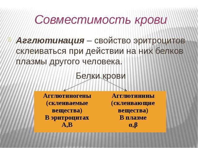 Совместимость крови Агглютинация – свойство эритроцитов склеиваться при дейст...